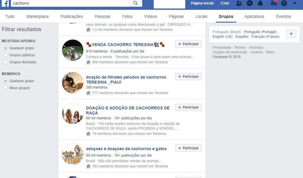 facebook cachorro doar